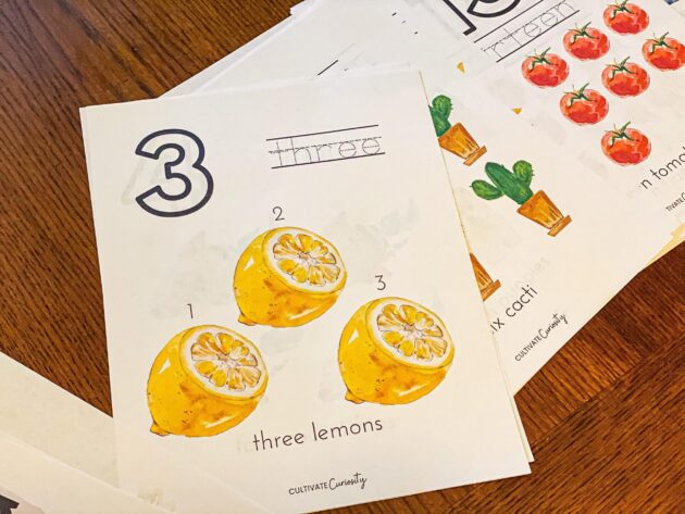 1-25 Counting Workbook