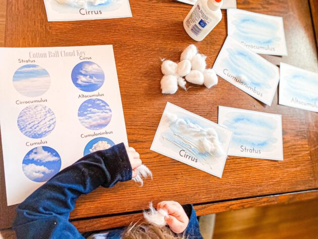 Cotton Ball Cloud Type Cards