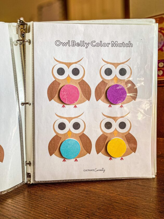 Owl Belly Color Matching Printable