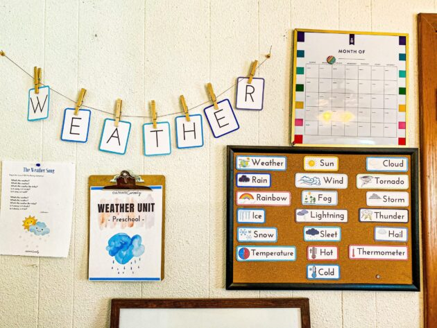 Weather Unit Wall
