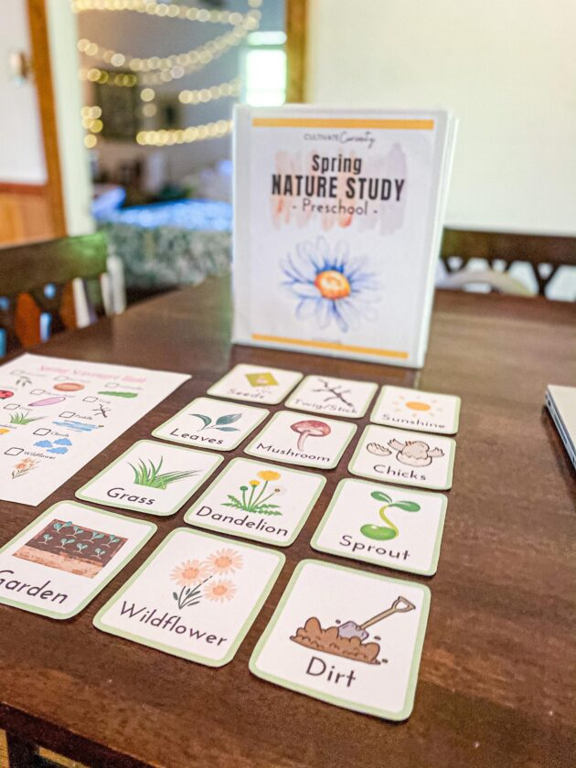 Spring Nature Study Flashcards
