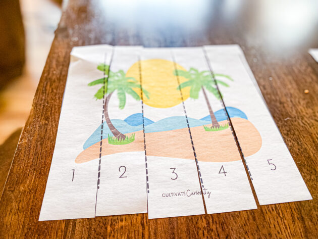 Summer Puzzle Pack