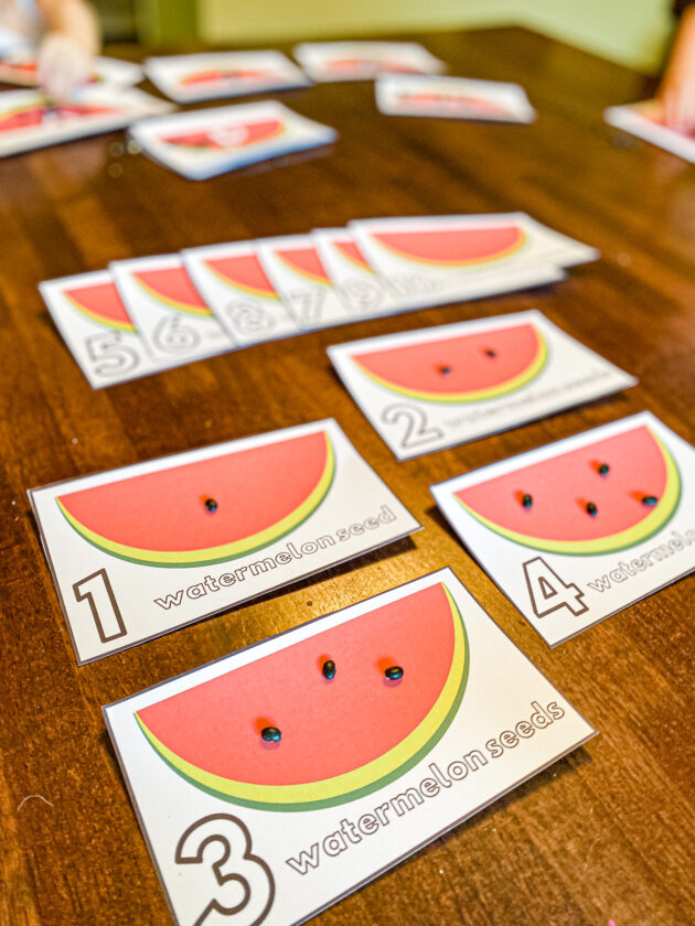 Watermelon Seed Counting Cards